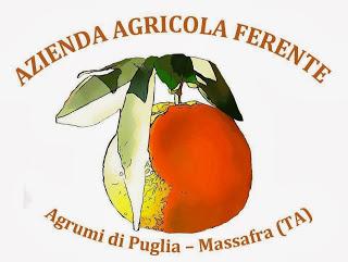 http://www.aziendaagricolaferente.com/AGRUMI-IN-PUGLIA.html