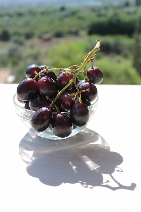Uva nera - La Cassata Celiaca