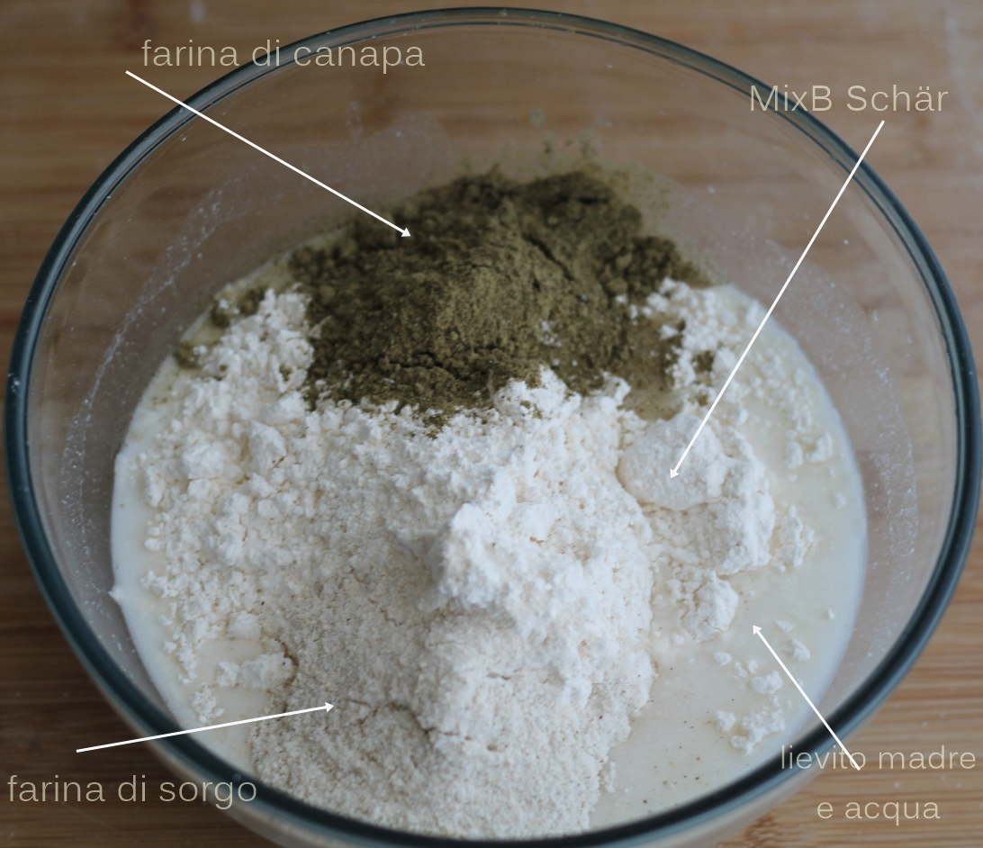 Focaccia sans gluten au romarin - La Cassata Celiaca