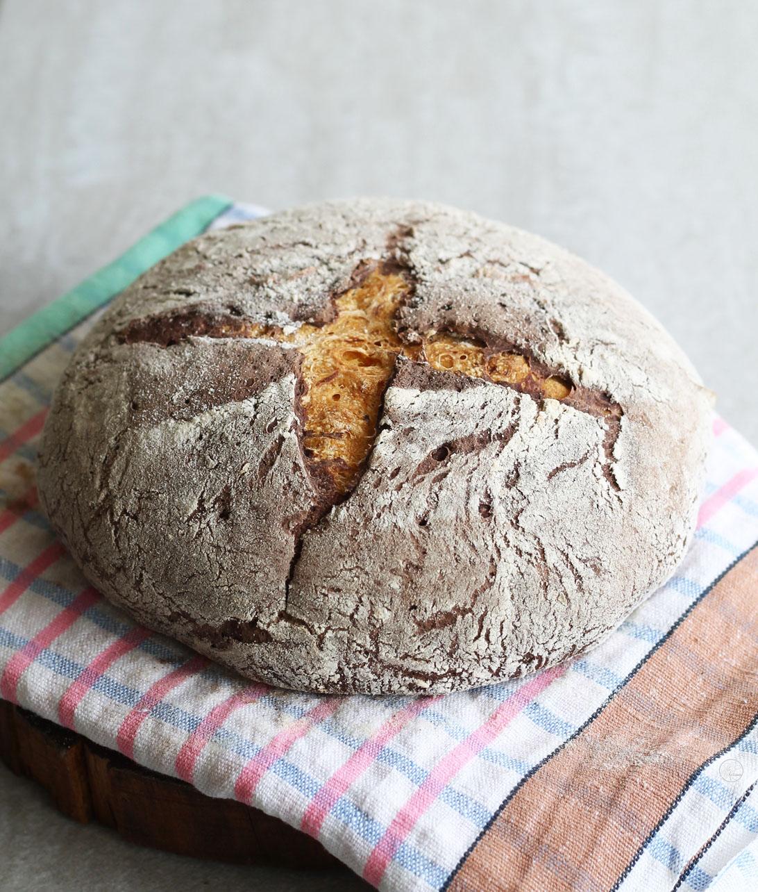 Pane senza glutine con zucca e cacao - La Cassata Celiaca