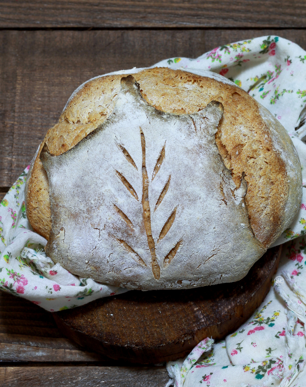 Pane foglia senza glutine - La Cassata Celiaca