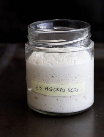 Levain de riz sans gluten - La Cassata Celiaca